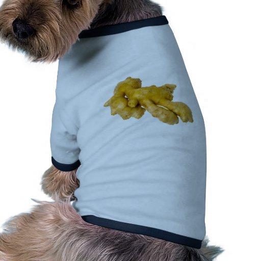 Raíz del jengibre camisas de mascota