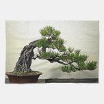 Raíz sobre árbol de los bonsais del pino de la roc toalla de cocina