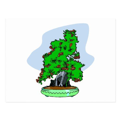 Raíz sobre bonsais florecientes de la roca tarjetas postales