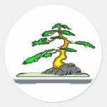 Raíz sobre los bonsais de la roca viejos en etiqueta redonda