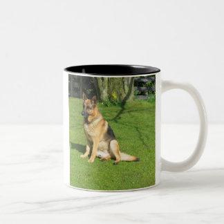 raj by the beech tree Two-Tone coffee mug