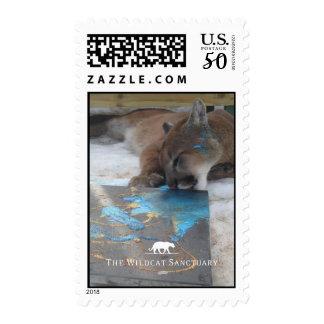 Raja Painting - Cougar Stamps