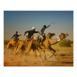 Rajasthan India camel races in the Thar Desert Posters