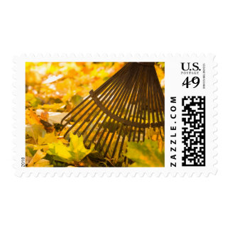 Rake And Leafs Stamp