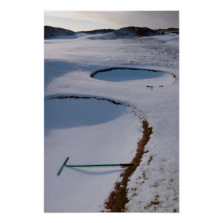 rakes in bunkers on a snow covered links course poster