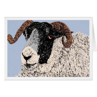 Ram at kirriemuir card