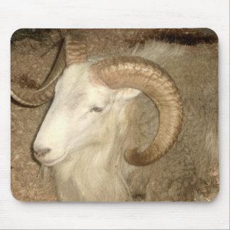 Ram at the Fair - mousepad