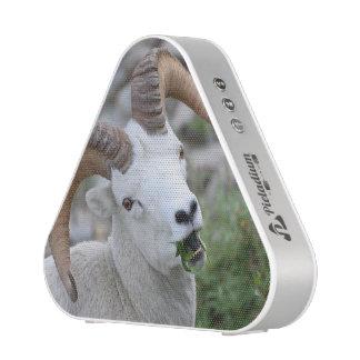 Ram Bluetooth Speaker