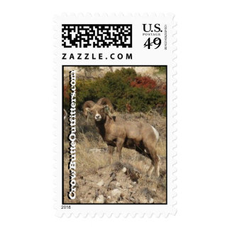 Ram, CrowButteOutfitters.com Stamp