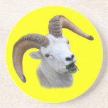 ram eating beverage coaster