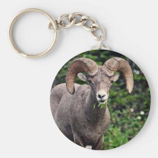 Ram Grazing Keychain