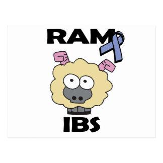 RAM IBS POSTCARD