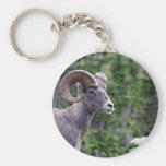 Ram in a Field Basic Round Button Keychain