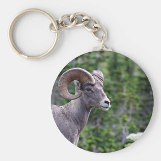 Ram in a Field Keychains