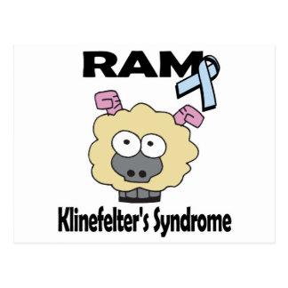 RAM Klinefelters Syndrome Postcard