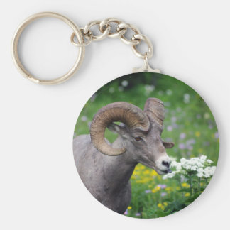 Ram - Smelling the Flowers Keychain