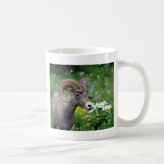 Ram - Smelling the Flowers Coffee Mugs