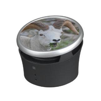 Ram Speaker