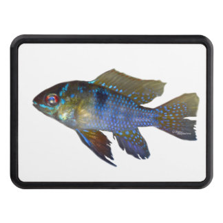 Ram tropical fish Hitch Cover
