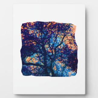 Rama azul anaranjada del extracto del roble placa