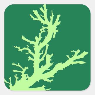 Rama coralina - cal y verde esmeralda pegatina cuadrada