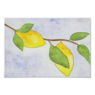 Rama de árbol con los limones y las hojas en póster