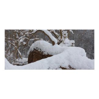 rama de árbol nevada lonas publicitarias