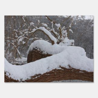 rama de árbol nevada señal