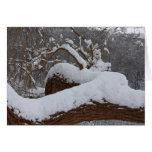 rama de árbol nevada tarjeta pequeña