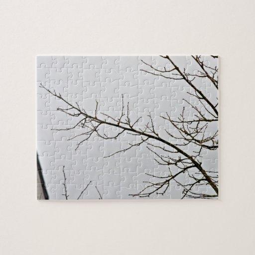 Rama de árbol sin las hojas contra el cielo nublad puzzle
