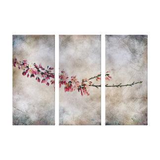 Rama de la flor de cerezo impresion de lienzo