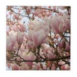 rama de la magnolia azulejo ceramica