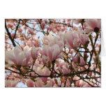 rama de la magnolia felicitación
