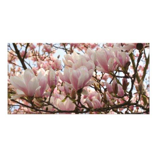rama de la magnolia tarjetas personales