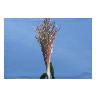 Rama de la planta de la caña gigante con la flor mantel individual