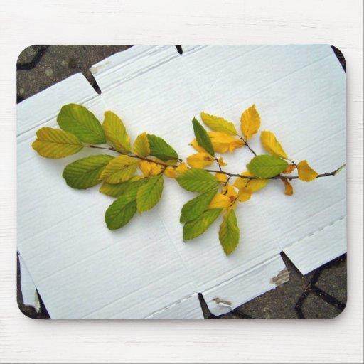 Rama de las hojas del verde y del amarillo alfombrillas de raton