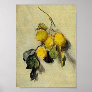 Rama de limones impresiones