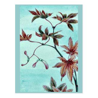 Rama de un árbol de arce con las semillas por tarjetas postales