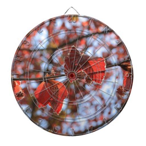 rama de una haya de cobre tabla dardos