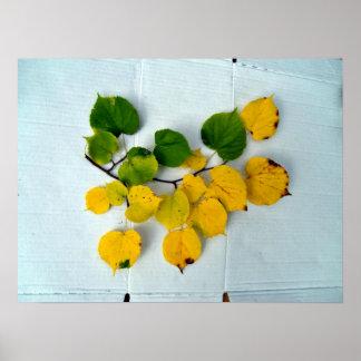 Rama del otoño con las hojas del verde y del amari poster