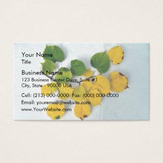 Rama del otoño con las hojas del verde y del tarjetas de visita