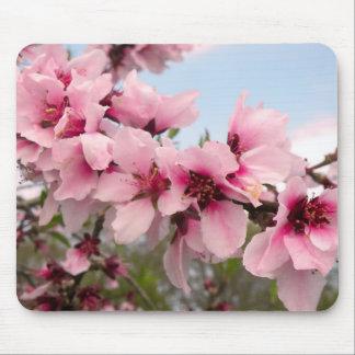 Rama floreciente rosada Mousepad