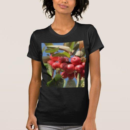 Rama roja de la baya camisetas