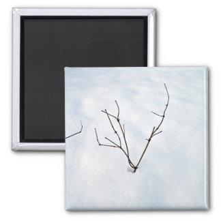 Rama secada en un paisaje nevoso iman para frigorífico