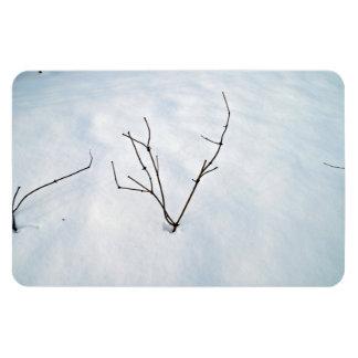 Rama secada en un paisaje nevoso imán de vinilo