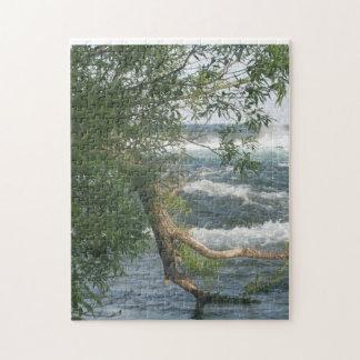 Rama y río puzzle