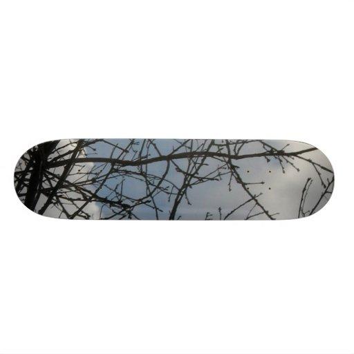 Ramas 2 TPD Skate Boards