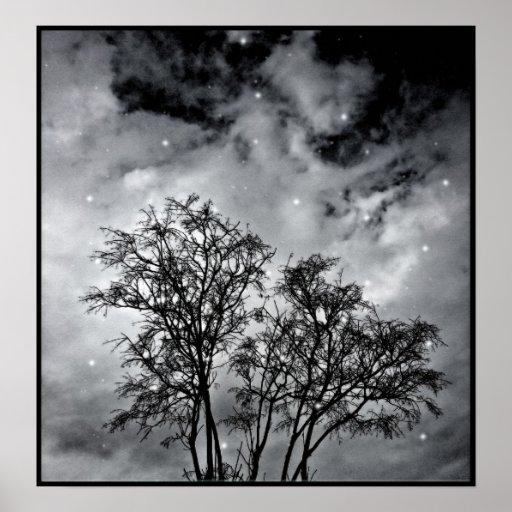 Ramas al cielo impresiones