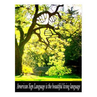 Ramas ASL-Handshaped Tarjetas Postales