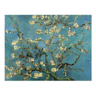 Ramas con el flor de la almendra de Vincent van Go Postal